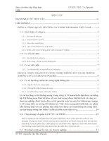 báo cáo thực tập tổng hợp khoa hệ thống thông tin tại CÔNG TY TNHH WINMARK VIỆT NAM.