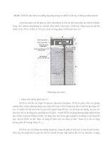 Thiết kế anten đơn cực phẳng ứng dụng trong các thiết bị cầm tay di động (mobile hanset).