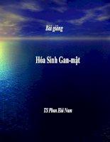 Bài giảng chủ đề Hoá sinh Gan-Mật