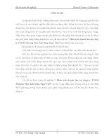 Phân tích doanh thu tại công ty TNHH Thương Mại Ánh Sáng Ngọc Việt