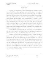 ĐỀ XUẤT VỀ VẤN KẾ TOÁN CHI PHÍ SẢN XUẤT GẠCH NGÓI TẠI CÔNG TY CỔ PHẦN TRẦN NGUYỄN HÀ.