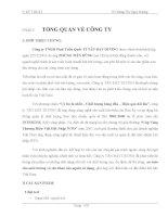 báo cáo thực tập tại công ty TNHH Phát Triển Quốc Tế TÂN ĐẠT DƯƠNG