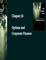 Chapter 24 options and corporate finance