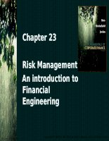 Chapter 23 risk management an introduction to financial engineering