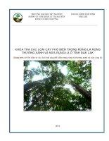 khóa tra các loài cây phổ biến trong rừng lá rộng thường xanh và nửa rụng lá ở tỉnh daklak
