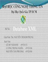 Tiểu luận môn Lập trình cơ sở dữ liệu Database XML