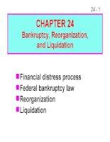 FM11 Ch 24 Bankruptcy, Reorganization, and Liquidation