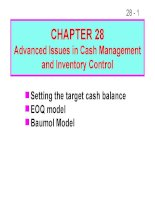 FM11 Ch 28 Advanced Issues in Cash Management and Inventory Control