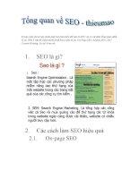 Tổng quan về các phương pháp Seo