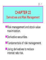 FM11 Ch 23 Derivatives and Risk Management