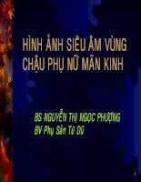 Hình ảnh siêu âm vùng chậu phụ nữ mãn kinh, BS.Nguyễn Thị Ngọc Phượng, bệnh viện phụ sản từ dũ
