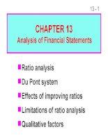 FM11 Ch 13 Analysis of Financial Statements