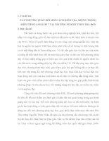 CÁC PHƯƠNG PHÁP ĐỔI MỚI CÁCH KIỂM TRA MIỆNG TRONG MÔN TIẾNG ANH LỚP 7 TẠI TRƯỜNG PTDTBT THCS TRÀ DON