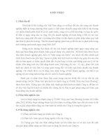 luận văn tốt nghiệp  Luận Văn Phân tích tình hình tài chính công ty TNHH Thủy sản Nam Phương