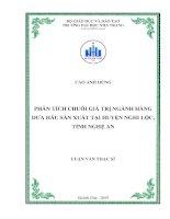 Phân tích chuỗi giá trị ngành hàng dưa hấu sản xuất tại huyện Nghi Lộc, tỉnh Nghệ An