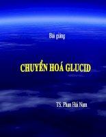 Bài giảng Sự chuyển hóa glucid, BS. Phan Hải Nam, học viện quân y