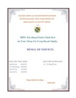 Tiểu luận môn Xây Dựng Chuẩn Chính Sách An Toàn Thông Tin Trong Doanh Nghiệp DENIAL OF SERVICES