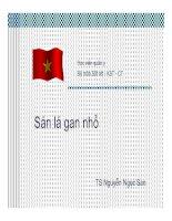 Bài giảng Sán lá gan nhỏ , TS.Nguyễn Ngọc San bộ môn sốt rét kí sinh trùng và côn trùng học viện quân y
