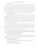 SKKN Một vài kinh nghiệm trong việc sử dụng các bảng, biểu nhằm rèn luyện kỹ năng đọc hiểu cho học sinh THPT áp dụng với bộ sách Tiếng Anh 10