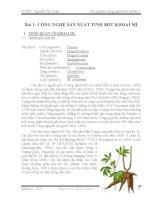 Báo cáo thí nghiệm công nghệ thực phẩm 1- Bài 1 Công nghệ sản xuất tinh bột khoai mì