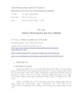 Tiểu Luận PHÂN TÍCH BÁO CÁO TÀI CHÍNH Công ty Cổ phần cao su Tây Ninh