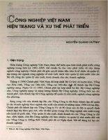 công nghiệp Việt Nam hiện trang và xu thế phát triển