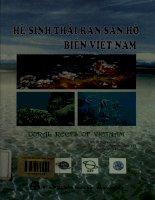 Hệ sinh thái rạn san hô biển Việt Nam