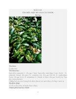 Tìm hiểu một số loại cây thuốc nam