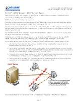 cấu hình dhcp server dhcp replay agent trong windows server_2003