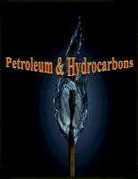 báo cáo  môi trường hydrocacbon và dầu mỏ