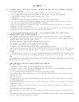 câu hỏi ôn tập lịch sử lớp 11 học kì 2