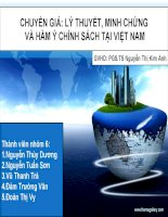 TIỂU LUẬN MÔN HỌC CÔNG TY XUYÊN ĐA QUỐC GIA Chuyển giá lý thuyết, minh chứng  và hàm ý chính sách tại Việt Nam