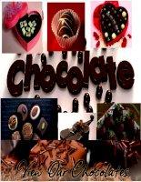 PP thuyết trình anh văn chuyên ngành về quy trình sản xuất chocolate và ứng dụng, lịch sử