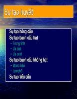 Chuyên đề nghiên cứu về sự tạo huyết, ThS.BS.Trang Thị Ánh Tuyết