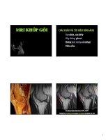 MRI chẩn đoán tổn thương khớp gối, khớp vai