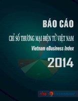 Báo cáo chỉ số thương mại điện tử Việt Nam EBI 2014