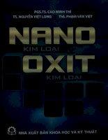 Nano kim loại và oxit kim loại