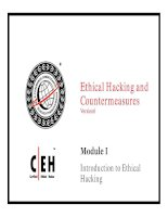 cehv6 module 01 introduction to ethical hacking