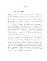 luận văn Nội dung và hình thức chuyển tải thông tin trên báo Tết