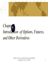 Chapter 1 introduction  of options, futures, and other derivatives