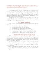 TÁC ĐỘNG CỦA THẢM HỌA ĐẾN SỨC KHỎE TÂM THẦN VÀ BIỆN PHÁP CHĂM SÓC HỖ TRỢ TÂM LÝ