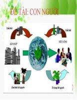 sinh thai hoc môi trường