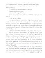 Tiểu luận môn hành chính so sánh, TỔ CHỨC NHÀ NƯỚC VÀ NỀN HÀNH CHÍNH SINGAPORE
