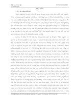 tiểu luận Bước đầu tìm hiểu thực trạng vấn đề hướng nghiệp cho con cái của các bậc cha mẹ huyện Văn Giang– tỉnh Hưng Yên