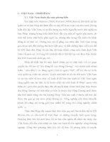 tiểu luận Sự giống và khác nhau trên con đường cứu nước của Inđônêxia và Việt Nam.
