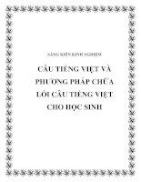 SKKN Câu Tiếng Việt và phương pháp chữa lỗi câu Tiếng Việt cho học sinh