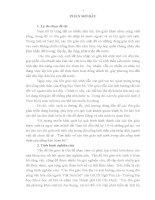 Tiểu luận Tìm hiểu về các tôn giáo nội sinh trong đời sống tinh thần của đồng bào Nam bộ