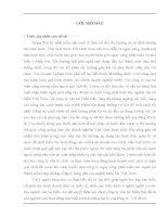 TỰ DO HÓA THƯƠNG MẠI CƠ HỘI VÀ THÁCH THỨC ĐỐI VỚI CÔNG TY CỔ PHẦN VẬN TẢI BIỂN BẮC