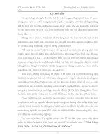 tiểu luận Tiềm Năng Phát Triển Du lịch Lễ Hội Dân Gian Ở Việt Nam