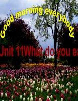 English 6 Unit 11 B1,3,4